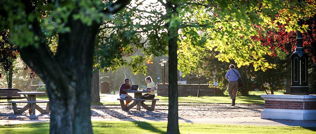 Students studying in the UND quad