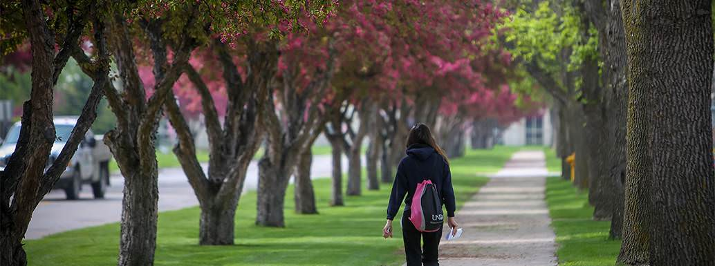 Student walking by pink trees