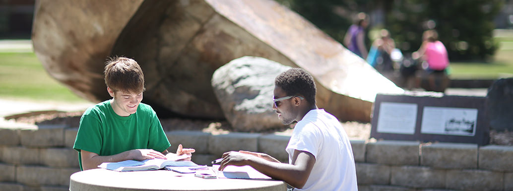 Two students studying at picnic table